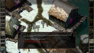 Icewind Dale Enhanced PC 18