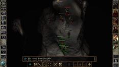 Icewind Dale Enhanced PC 22
