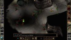 Icewind Dale Enhanced PC 23