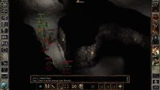 Icewind Dale Enhanced PC 25