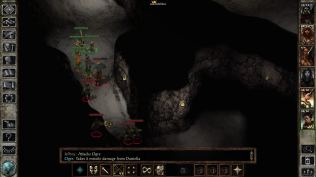 Icewind Dale Enhanced PC 25