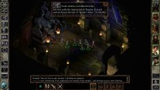 Icewind Dale Enhanced PC 26