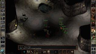 Icewind Dale Enhanced PC 27