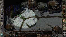 Icewind Dale Enhanced PC 30