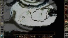 Icewind Dale Enhanced PC 35