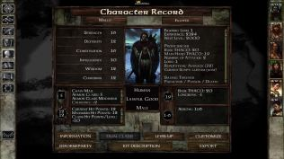 Icewind Dale Enhanced PC 36