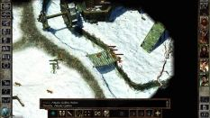 Icewind Dale Enhanced PC 37