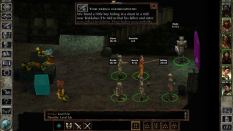 Icewind Dale Enhanced PC 41