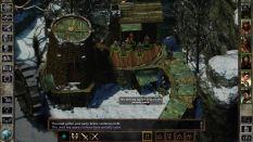 Icewind Dale Enhanced PC 43
