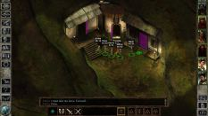 Icewind Dale Enhanced PC 52