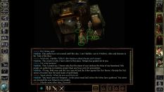 Icewind Dale Enhanced PC 53