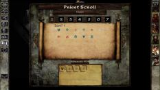 Icewind Dale Enhanced PC 58
