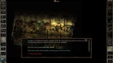 Icewind Dale Enhanced PC 68