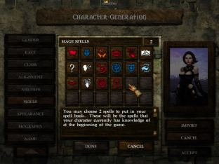 Icewind Dale PC 09