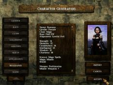 Icewind Dale PC 10