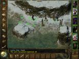 Icewind Dale PC 37