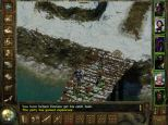 Icewind Dale PC 40