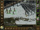 Icewind Dale PC 41