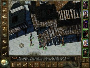 Icewind Dale PC 42