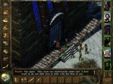 Icewind Dale PC 43