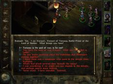 Icewind Dale PC 44