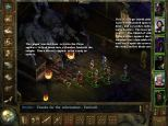 Icewind Dale PC 48