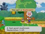 Paper Mario - The Thousand Year Door Gamecube 123