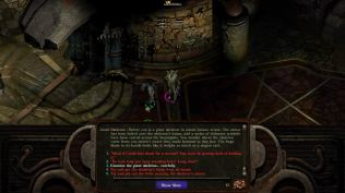 Planescape Torment Enhanced Edition PC 017