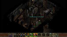 Planescape Torment Enhanced Edition PC 051
