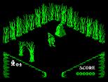 Pentagram ZX Spectrum 13