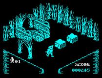 Pentagram ZX Spectrum 29