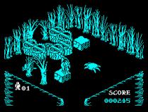 Pentagram ZX Spectrum 30