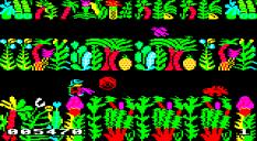 Sabre Wulf BBC Micro 07
