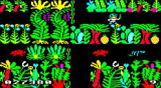 Sabre Wulf BBC Micro 36