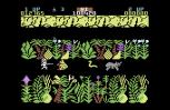 Sabre Wulf C64 07