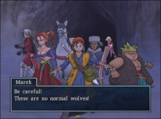 Dragon Quest 8 PS2 088