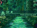 Etrian Odyssey 2 - Heroes of Lagaard Nintendo DS 042