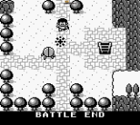 For The Frog The Bell Tolls Game Boy 074