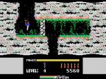 HERO ColecoVision 17