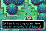 The Legend of Zelda - The Minish Cap GBA 019