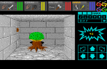 Dungeon Master - Theron's Quest PC Engine 017