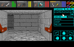 Dungeon Master - Theron's Quest PC Engine 029