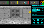 Dungeon Master - Theron's Quest PC Engine 041