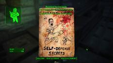 Fallout 4 PC 037