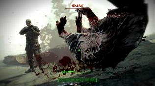 Fallout 4 PC 062