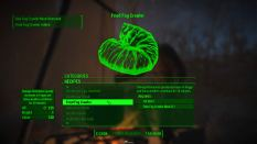 Fallout 4 PC 114