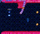 Salamander Arcade 04