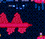 Salamander Arcade 06