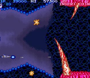 Salamander Arcade 11