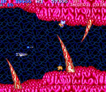 Salamander Arcade 12